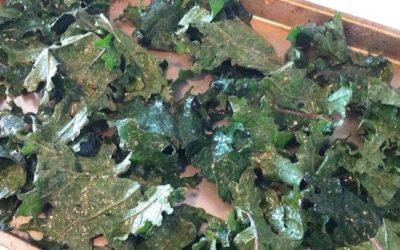 Organic Kale Chips Recipe